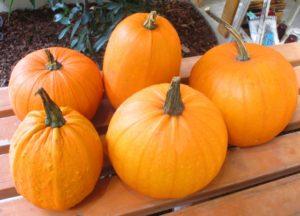 02a53cb6652dd11c8140c10dbece62cf_s-300x225 ハロウィンのかぼちゃの顔の作り方や種類・名前の由来!販売店はどこ?