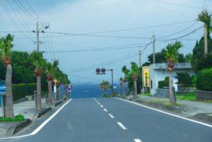 image004-5-300x203 屋久島の日帰り観光のおすすめコース!穴場や各スポットの見どころは?